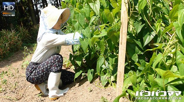 働く地方のお母さん 〜農業を営む未亡人 前編〜